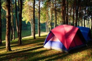 4 person tent set up in trees by lake